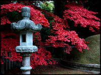 Red leaves and lantern