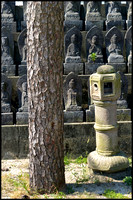 Tree, lantern and statues