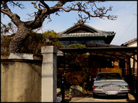 Gate and old car