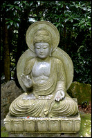 Buddha and coins