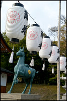 Lanterns and horse