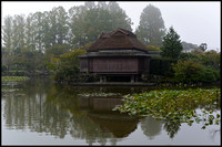 Teahouse in mist