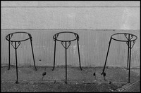 Plant stands b&w