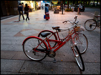 Two red bicycles