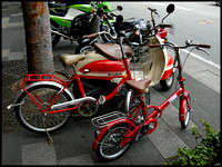 RD red bikes
