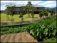 Aged care hostel on sold farmland