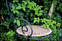 Overgrown chair
