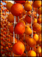 Persimmons drying