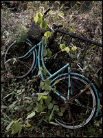 Abandoned bicycle DS