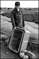 Vegetable farmer B&W