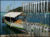 Boat and drying fish