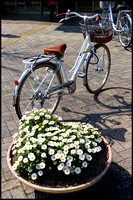 Flower pot and bicycle